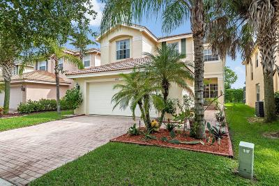 Royal Palm Beach Single Family Home For Sale: 668 Peppergrass Run