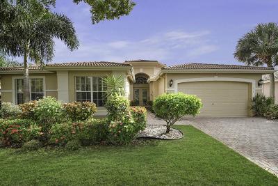 Boynton Beach Single Family Home For Sale: 11636 Puerto Boulevard