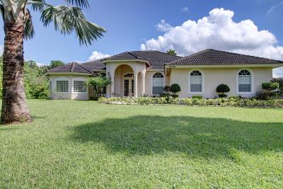 Loxahatchee Single Family Home For Sale: 3396 SE 180th Avenue