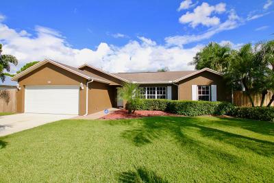 Port Saint Lucie Single Family Home For Sale: 4685 SW Joffre Street
