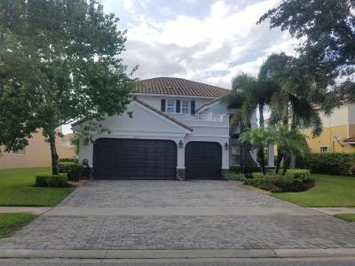 Boynton Beach Single Family Home For Sale: 10133 Cobblestone Creek Drive