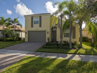 Port Saint Lucie Single Family Home For Sale: 11252 SW Kingslake Circle