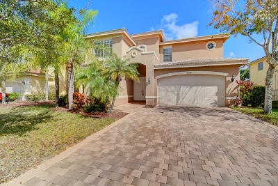 Boynton Beach Single Family Home For Sale: 11330 SW Millpond Greens Drive