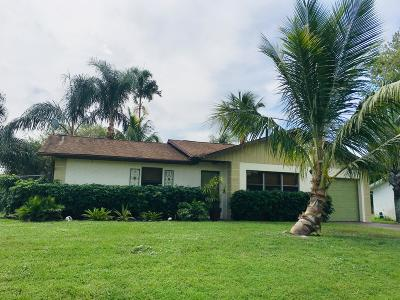 Port Saint Lucie Single Family Home For Sale: 512 SW Buswell Avenue