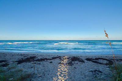 Jensen Beach Condo For Sale: 7440 S Ocean Drive #424