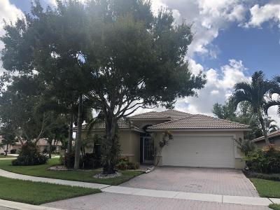 Boynton Beach Single Family Home For Sale: 8199 Duomo Circle