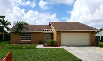 Royal Palm Beach Single Family Home Contingent: 421 Las Palmas Street