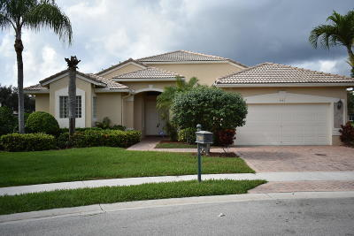 Boynton Beach Single Family Home For Auction: 7751 New Ellenton Drive