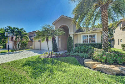 Boca Raton Single Family Home For Sale: 12322 Riverfalls Court