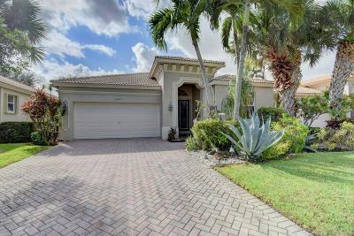 Boynton Beach Single Family Home For Sale: 6940 Southport Drive