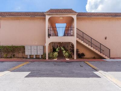 Boca Raton Condo For Sale: 650 SW 2nd Avenue #1490