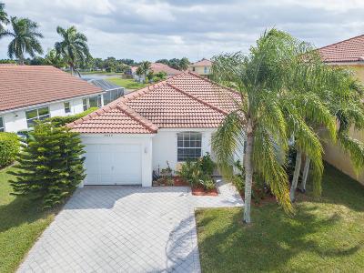 Wellington Single Family Home For Sale: 3677 Miramontes Circle