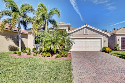 Boynton Beach Single Family Home For Sale: 9897 Yellowfield Drive