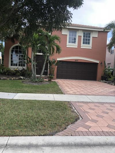 Royal Palm Beach Single Family Home For Sale: 2814 Misty Oaks Circle