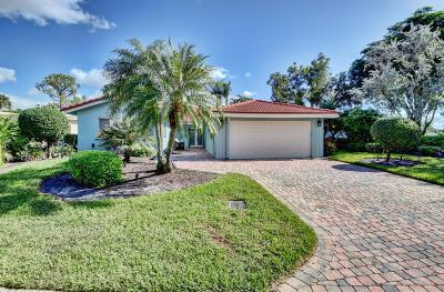 Boynton Beach Single Family Home For Sale: 18 Estate Drive