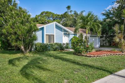 Jupiter Single Family Home For Sale: 18242 Jupiter Landings Drive