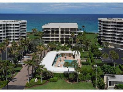 Palm Beach Condo For Sale: 3390 S Ocean Boulevard #204