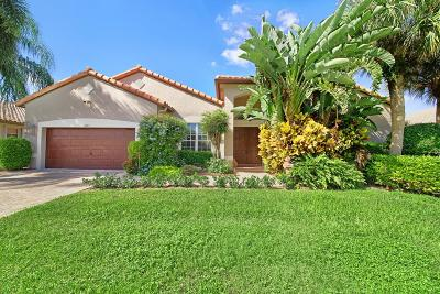 Boynton Beach Single Family Home For Sale: 6823 W Liseron