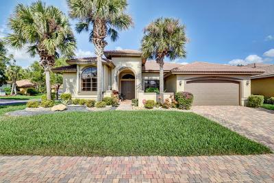 Delray Beach Single Family Home For Sale: 9579 Tivoli Isles Boulevard