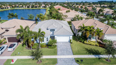 Boynton Beach Single Family Home For Sale: 9561 Dovetree Isle Drive