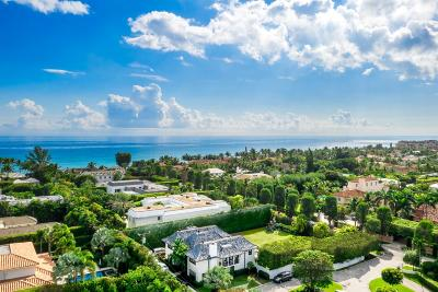 Palm Beach FL Single Family Home For Sale: $11,900,000
