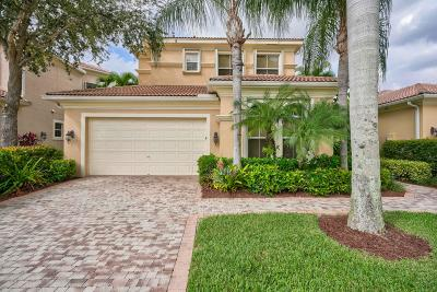 Palm Beach Gardens Single Family Home For Sale: 229 Andalusia Drive