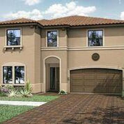 Lake Worth Single Family Home For Sale: 7158 Estero Drive