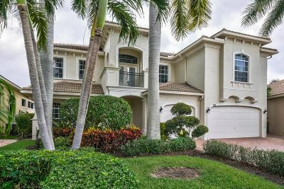 Palm Beach Gardens FL Single Family Home For Sale: $1,250,000