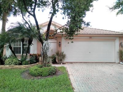 Boynton Beach Single Family Home For Sale: 7691 San Carlos Street