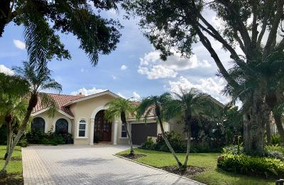 Port Saint Lucie Single Family Home For Sale: 1250 SW Starlite Cove