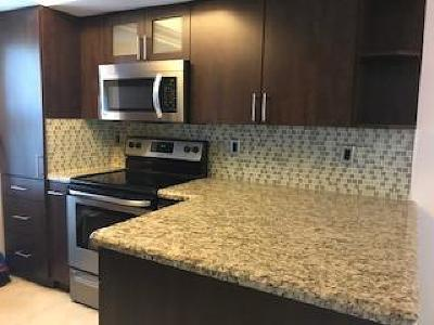 Boca Raton Rental For Rent: 1845 NW 4th Avenue #16