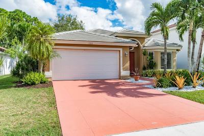 Wellington Single Family Home For Sale: 1802 S Club Drive