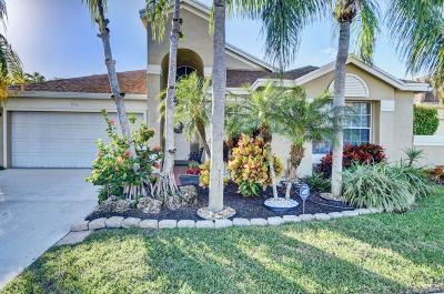 Boca Raton Single Family Home For Sale: 9361 Aegean Drive