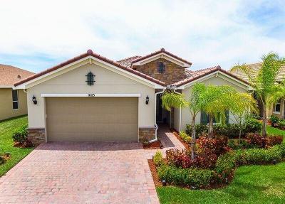 Port Saint Lucie Single Family Home For Sale: 10113 SW Yellowwood Avenue