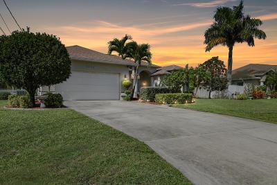 Port Saint Lucie Single Family Home For Sale: 5794 NW Zinnia Street