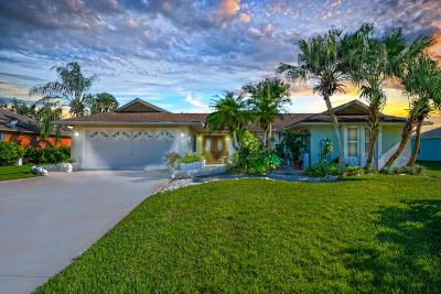 Port Saint Lucie Single Family Home For Sale: 1867 SW Import Drive