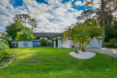 Port Saint Lucie Single Family Home For Sale: 2002 SW Jaguar Avenue
