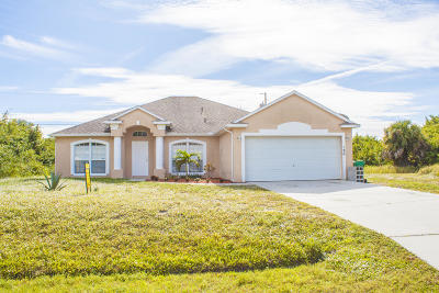 Port Saint Lucie Single Family Home For Sale: 180 SW Ladybug Drive