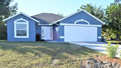 Port Saint Lucie Single Family Home For Sale: 590 SW Jeanne Avenue