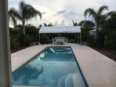 Port Saint Lucie Single Family Home For Sale: 466 SE Nome Drive