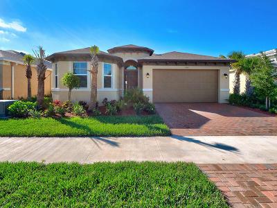 Port Saint Lucie Single Family Home For Sale: 11192 SW Lake Park Drive