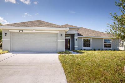 Port Saint Lucie Single Family Home For Sale: 3930 SW Jarmer Road