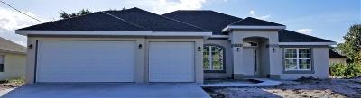 Port Saint Lucie Single Family Home For Sale: 4111 SW Webb Street