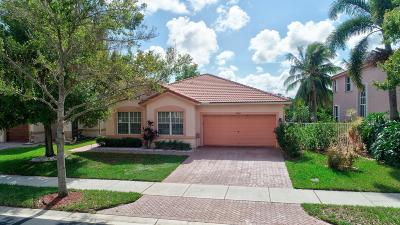 Delray Beach Single Family Home For Sale: 4794 Classical Boulevard