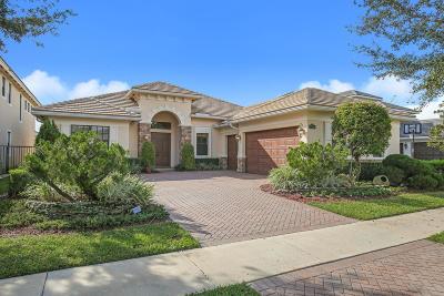 Boynton Beach Single Family Home For Sale: 9336 Equus Circle