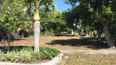 Delray Beach Residential Lots & Land For Sale: 809 NW 2nd Street
