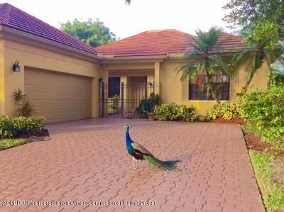 West Palm Beach Single Family Home For Sale: 1894 Gulfstream Way