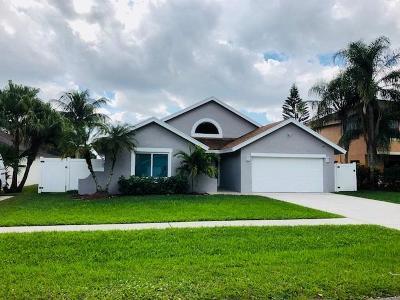 Boca Raton Single Family Home For Sale: 22393 Swordfish Drive
