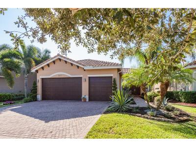 Boynton Beach Single Family Home For Sale: 8577 Serena Creek Avenue