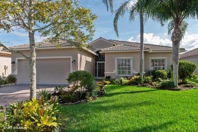 Boynton Beach Single Family Home Contingent: 8409 Grand Messina Circle